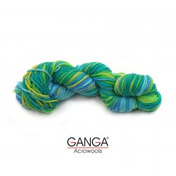 Ganga-Alisha-Multi-Color-815208